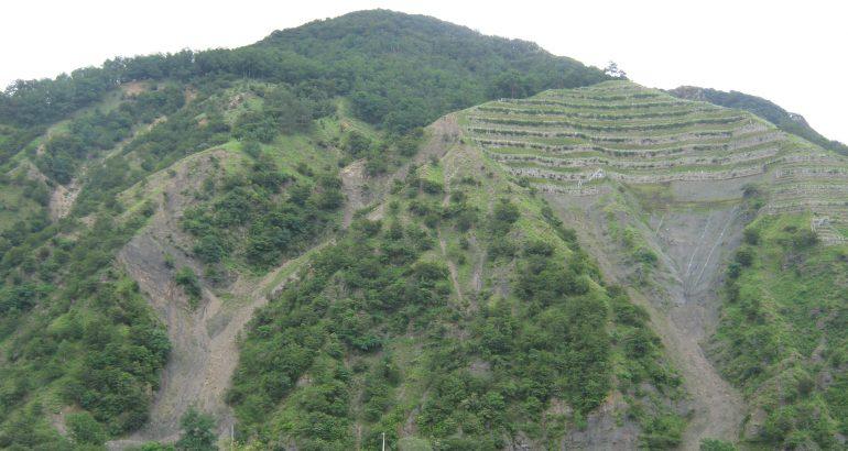 L' affaire d'Ashio (extraction minière, Japon)