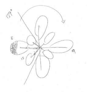 la vie des plantes : un nouveau paradigme Image-2-bis-284x300