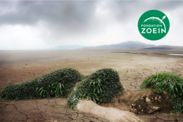 «Droits de la nature et crime d'écocide doivent être reconnus». Entretien avec Valérie Cabanes