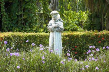 Quelques réflexions sur la lettre encyclique du Pape François Laudato si' et sur certains commentaires l'ayant accompagnée