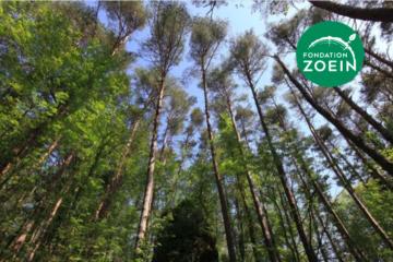 « Paysans, plantez des arbres! ». Entretien avec Ernst Zürcher