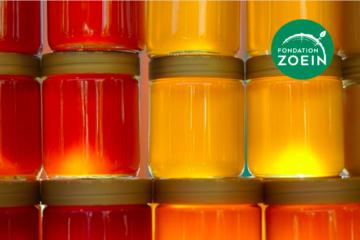 «La science citoyenne au secours des abeilles». Entretien avec Alexandre Aebi