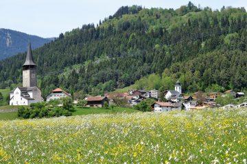 Églises et écologie : une «révolution à reculons» ?