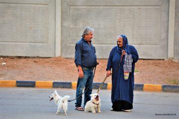 <strong>Quand l'aspiration à la démocratie passe par les signes écologiques : le cas de l'Iran et de la résistance par les chiens