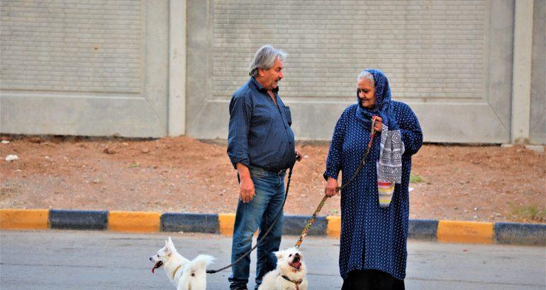 Quand l'aspiration à la démocratie passe par les signes écologiques : le cas de l'Iran et de la résistance par les chiens